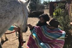 Salida caballos